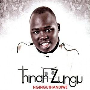 Thinah Zungu - Fear Not (feat. Dumi Mkokstad)